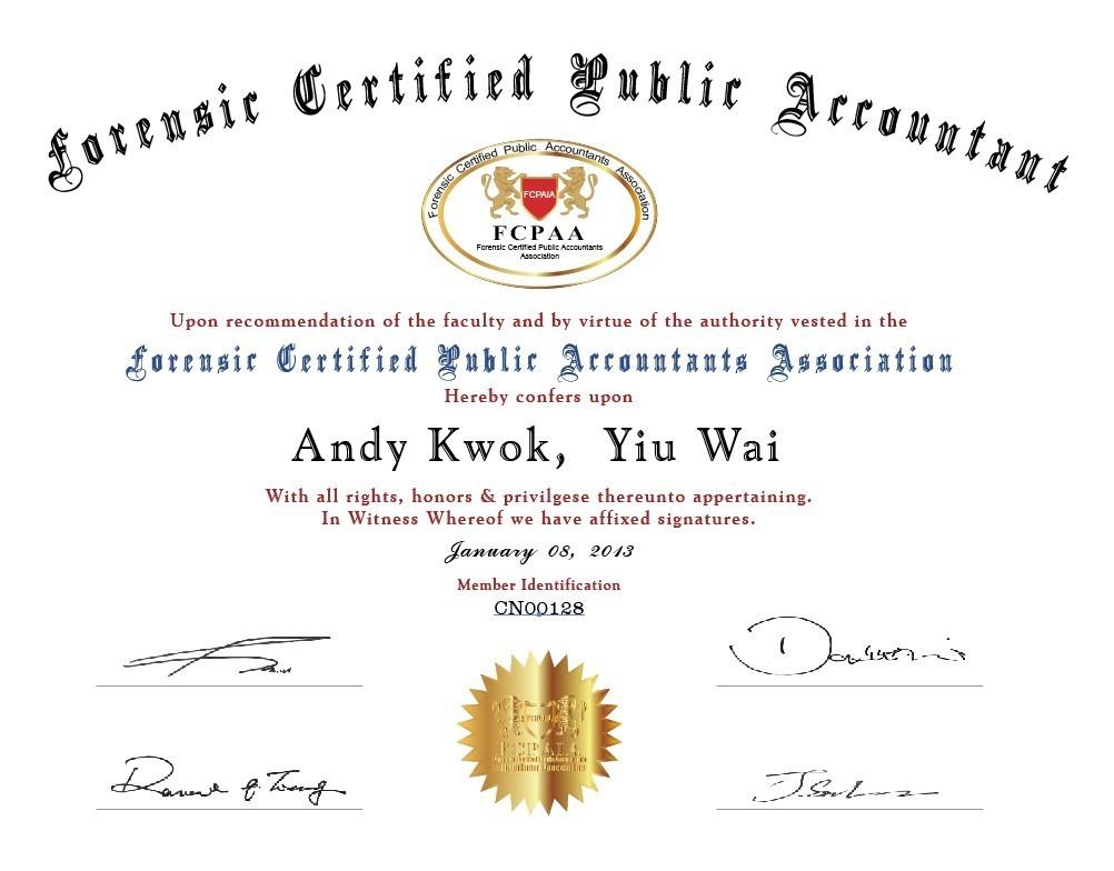 美国注册龙8国际电脑版会计师样本